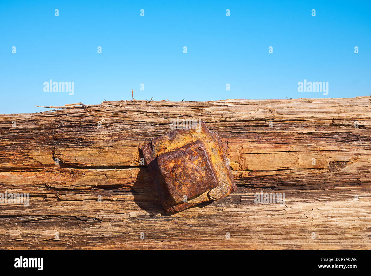 An old rusting square bolt head in a piece of old decaying wood with a light blue background with space for writing Stock Photo