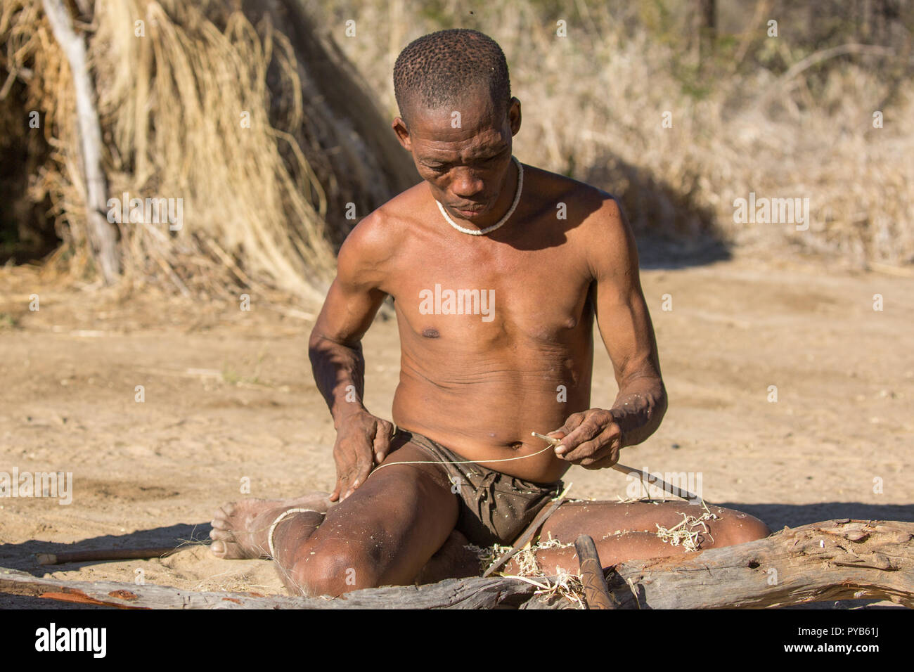 A group of Bushmen preparing bows and arrows for hunting. Photographed in Namibia - Stock Image