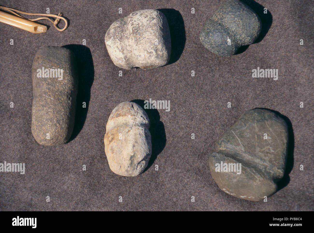 Native American stone tools, living history display at Lewis & Clark's Fort Mandan, North Dakota. Photograph - Stock Image