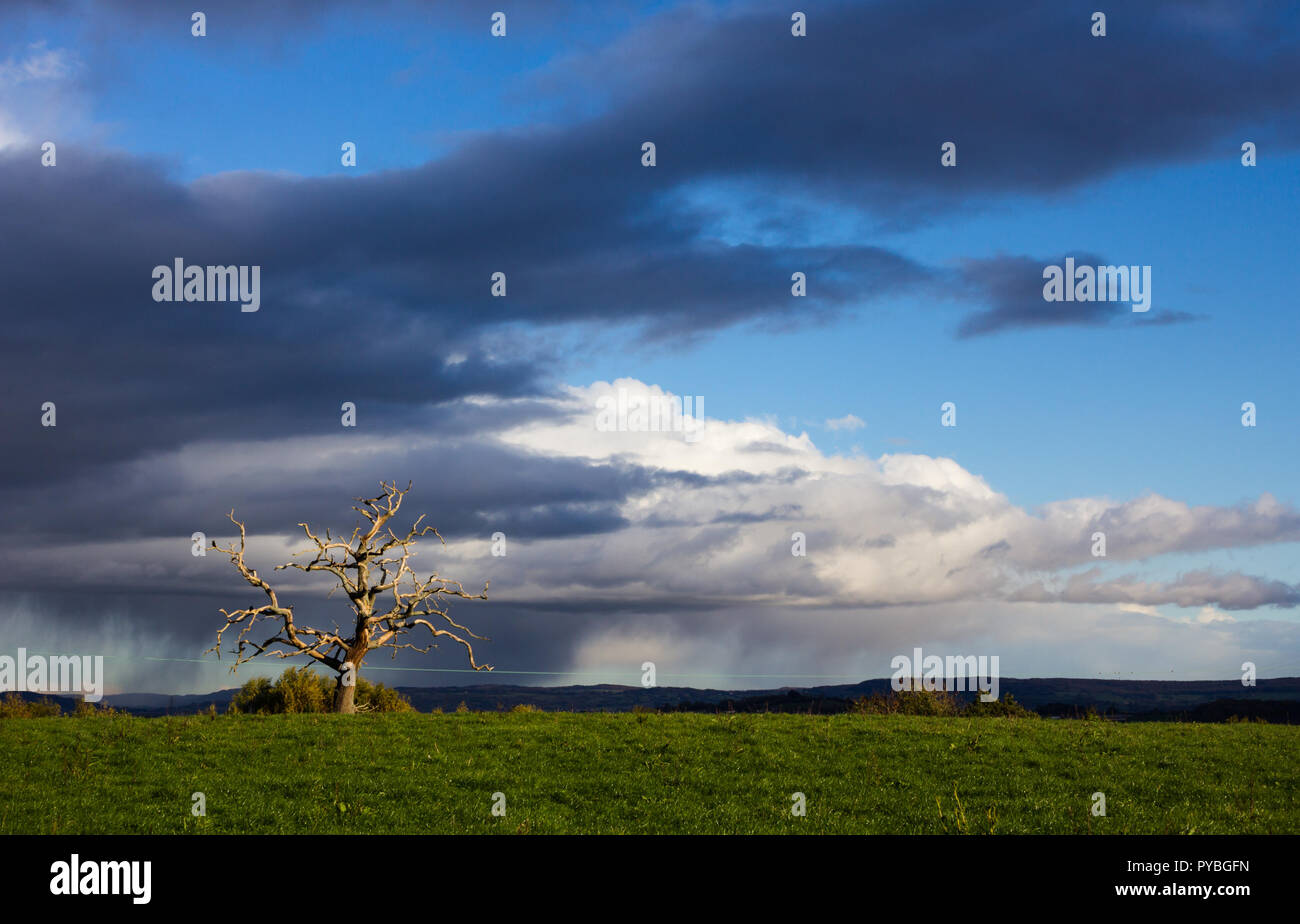 Newnham-on-Severn, Gloucestershire. 26th October 2018: UK Weather: Sunshine and slow moving showers over the Severn Valley near Newnham-on-Severn, Gloucestershire, UK. Credit Joseph Clemson, JY News Images/Alamy Live News Stock Photo