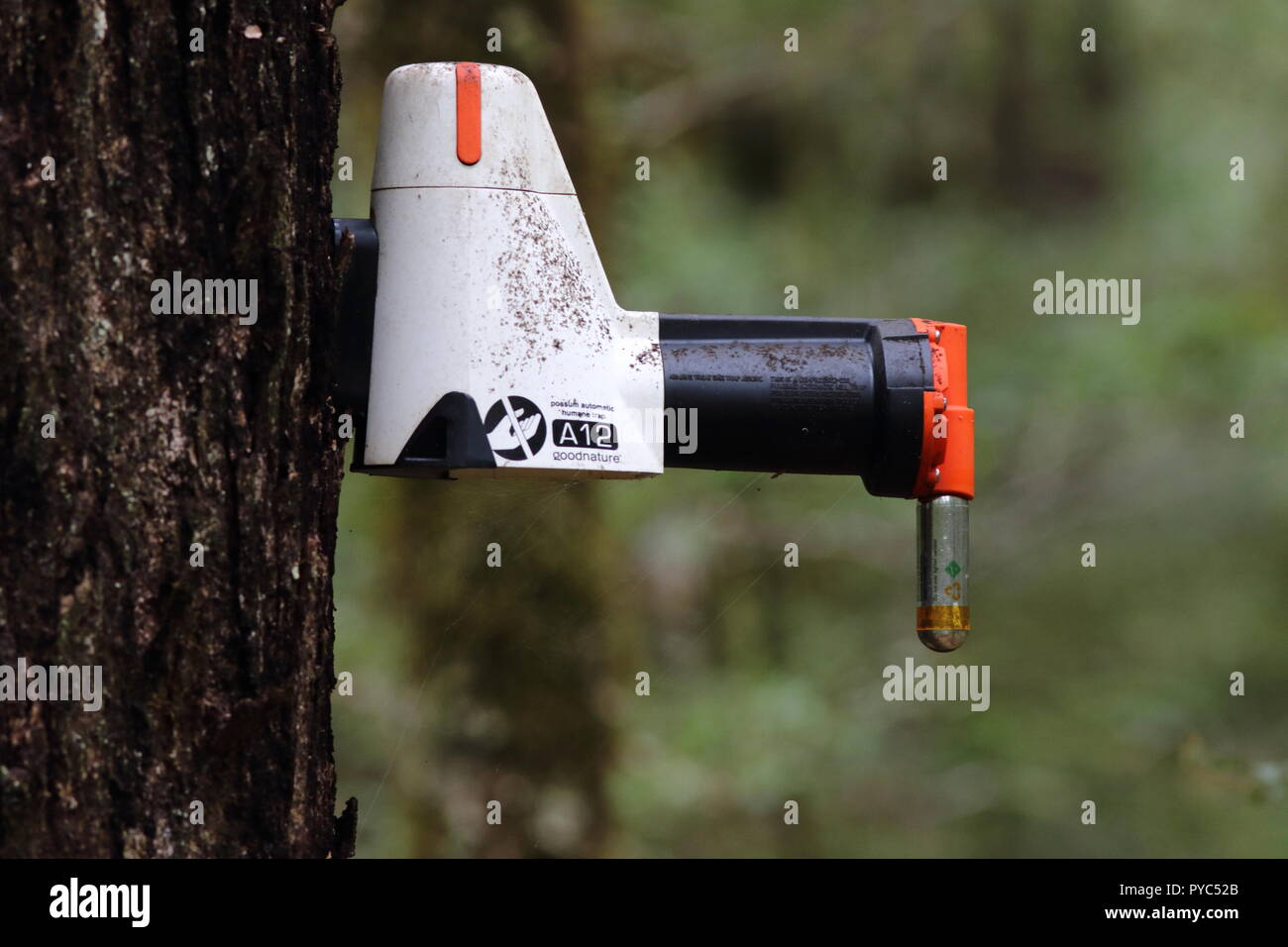 A 12 Possum humane killing trap, used in New Zealand to eradicate the Possum by 2050, for conservation of its wildlife use to destroy invasive species - Stock Image