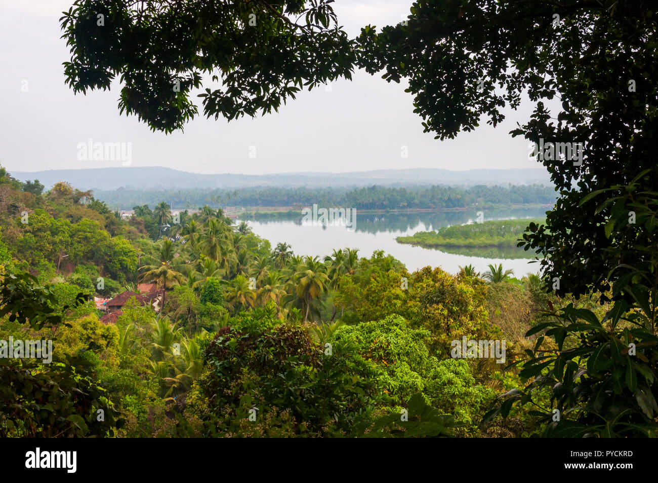 Emerald jungles, meandering rivers, rice plantations, pastures and many other scenic surroundings of North Goa. - Stock Image