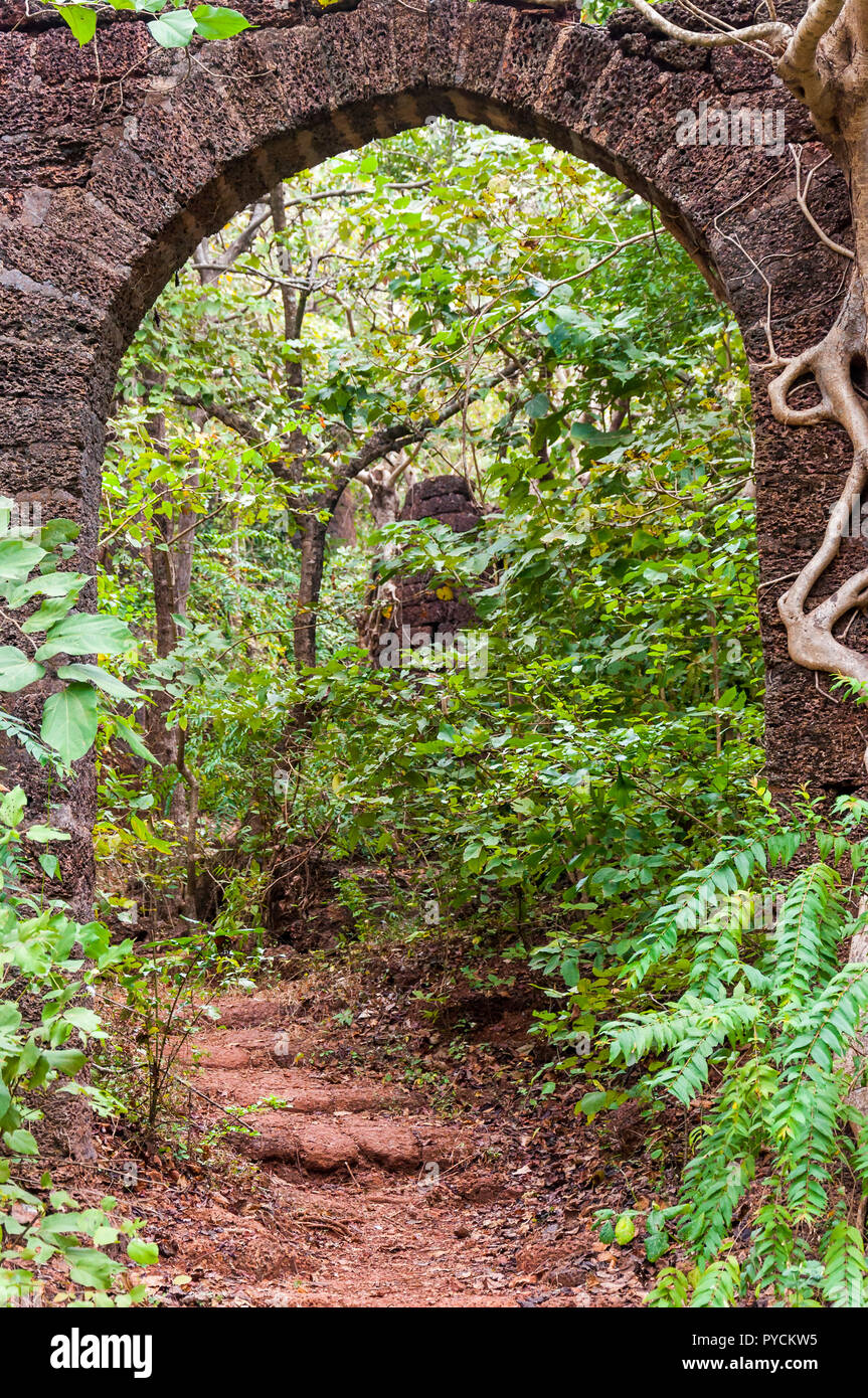 Here you can see the ancient overgrown stone arc in the middle of jungles as a part of a huge ruined Portugal fort complex. - Stock Image
