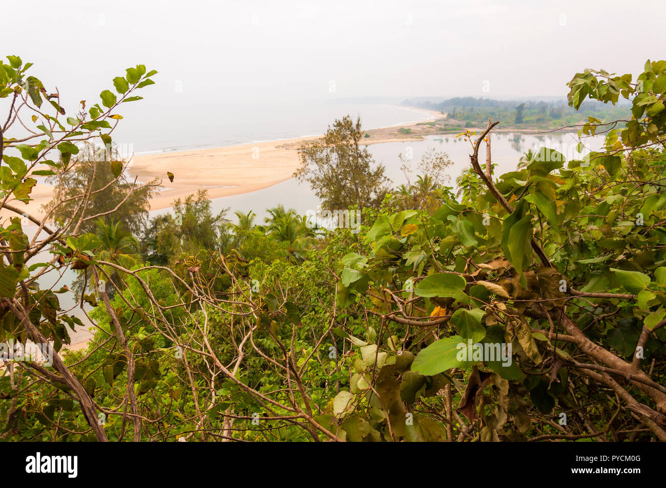Here through the jungles you can see the famous Paradise Beach that is located on the southeast part of Maharashtra state. - Stock Image