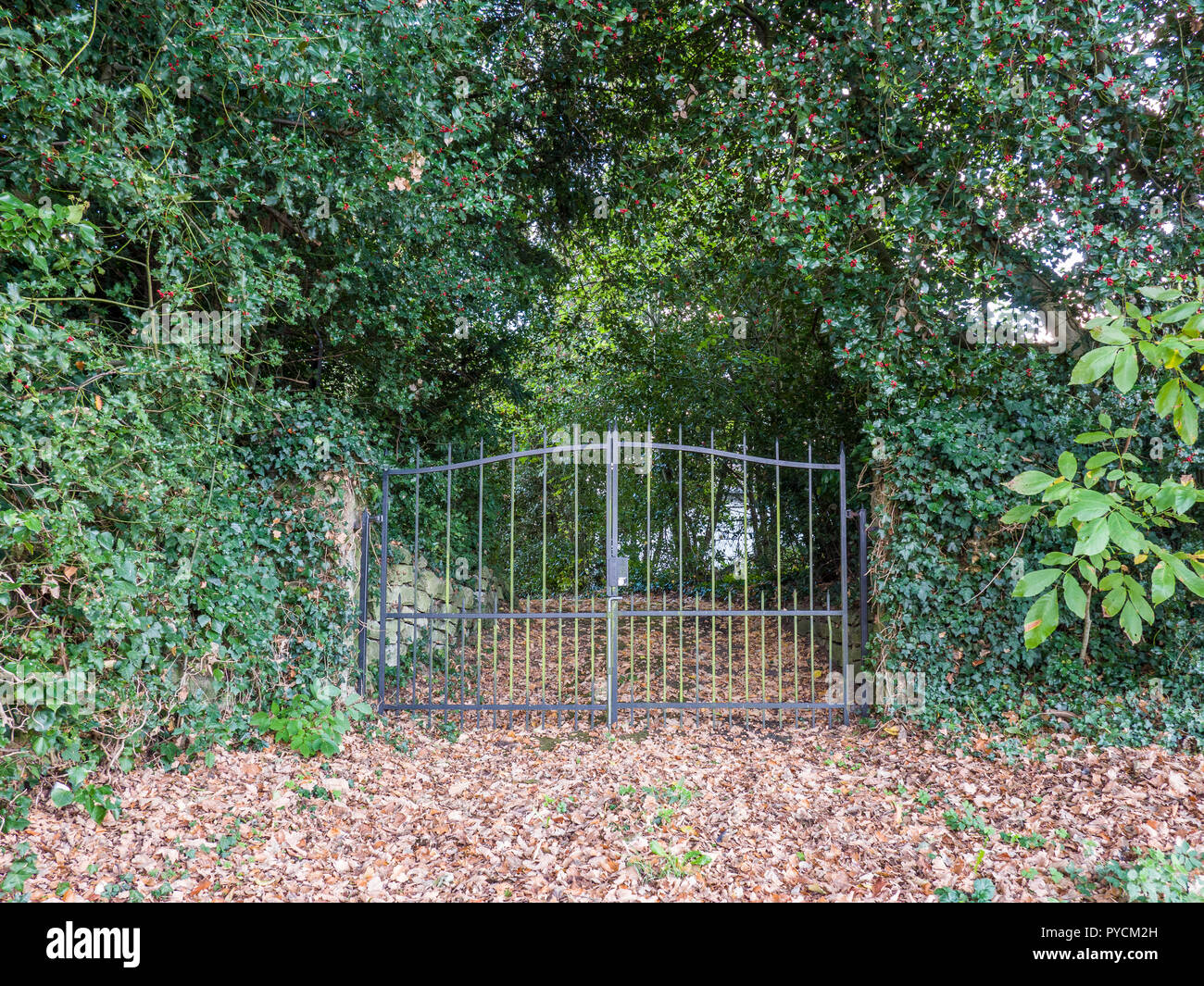 Closed iron entrance gate to a residence during autumntime. - Stock Image