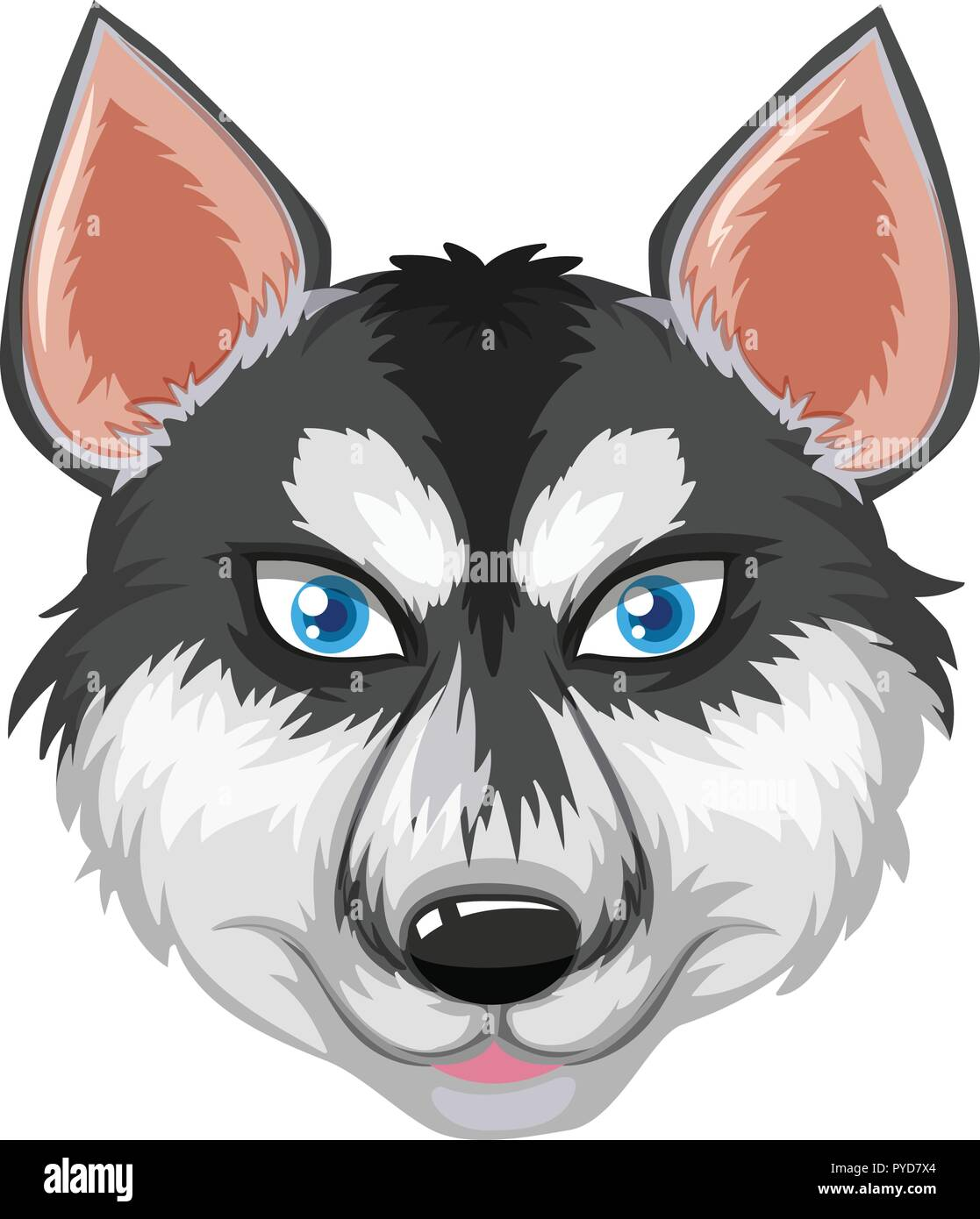 Face of siberian husky illustration - Stock Vector