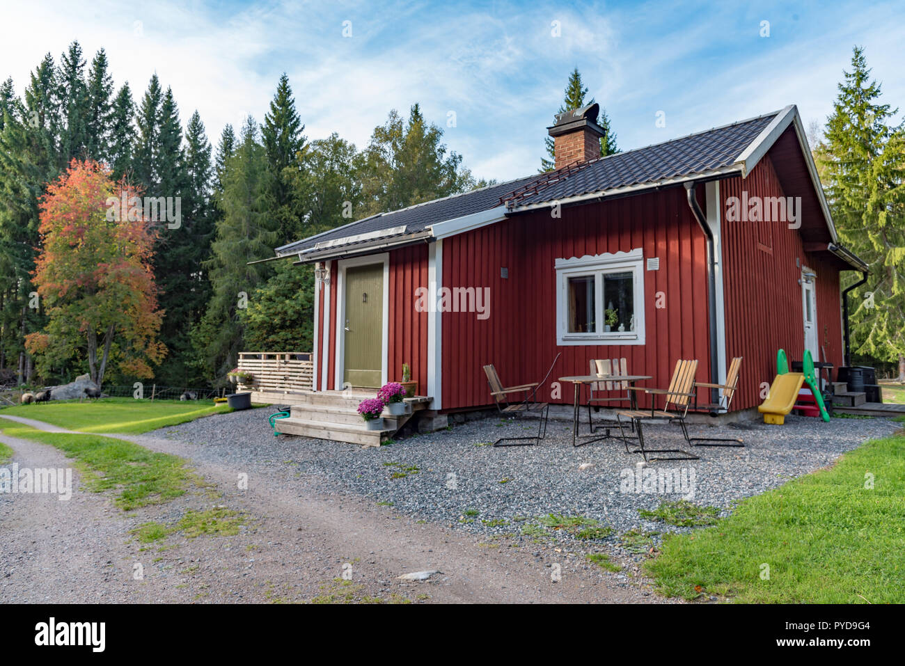 little red cabin with a green door in swedish forest autumn 2018 - Stock Image