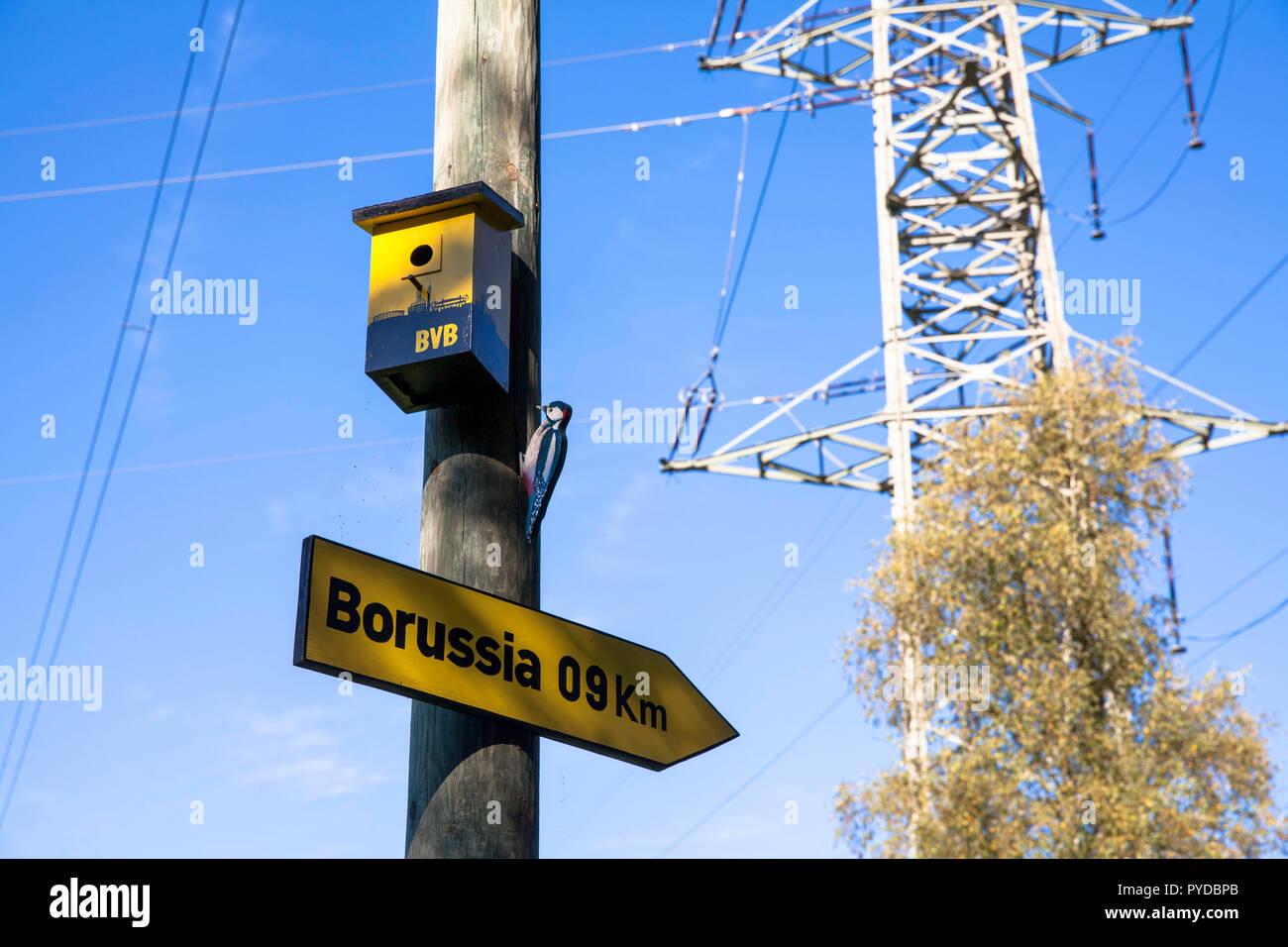 birdhouse of a fan of the fooball club Borussia Dortmund  under a high voltage pylon in Herdecke, Germany.  Vogelhaeuschen eines Borussia Dortmund Fan - Stock Image