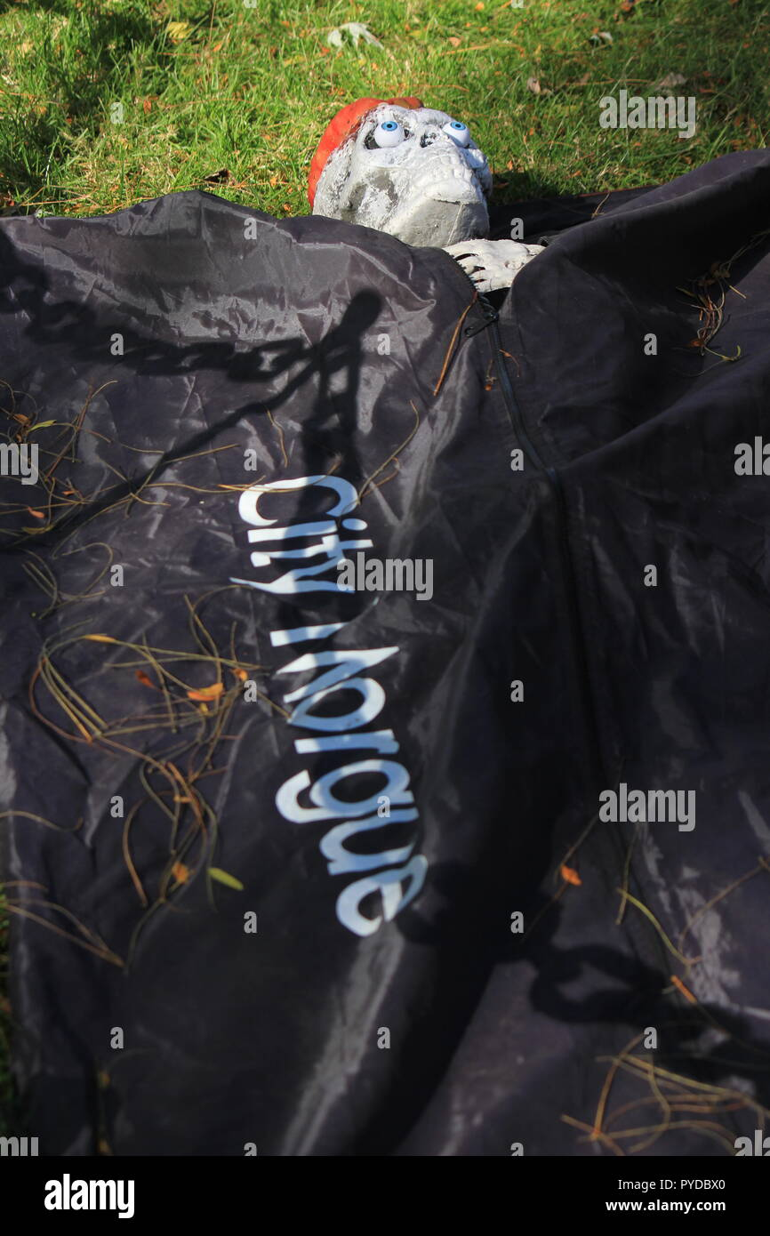 Dead skeleton human body wrapped in a black body bag with 'City Morgue' written on the front as creative Halloween lawn decorations. - Stock Image