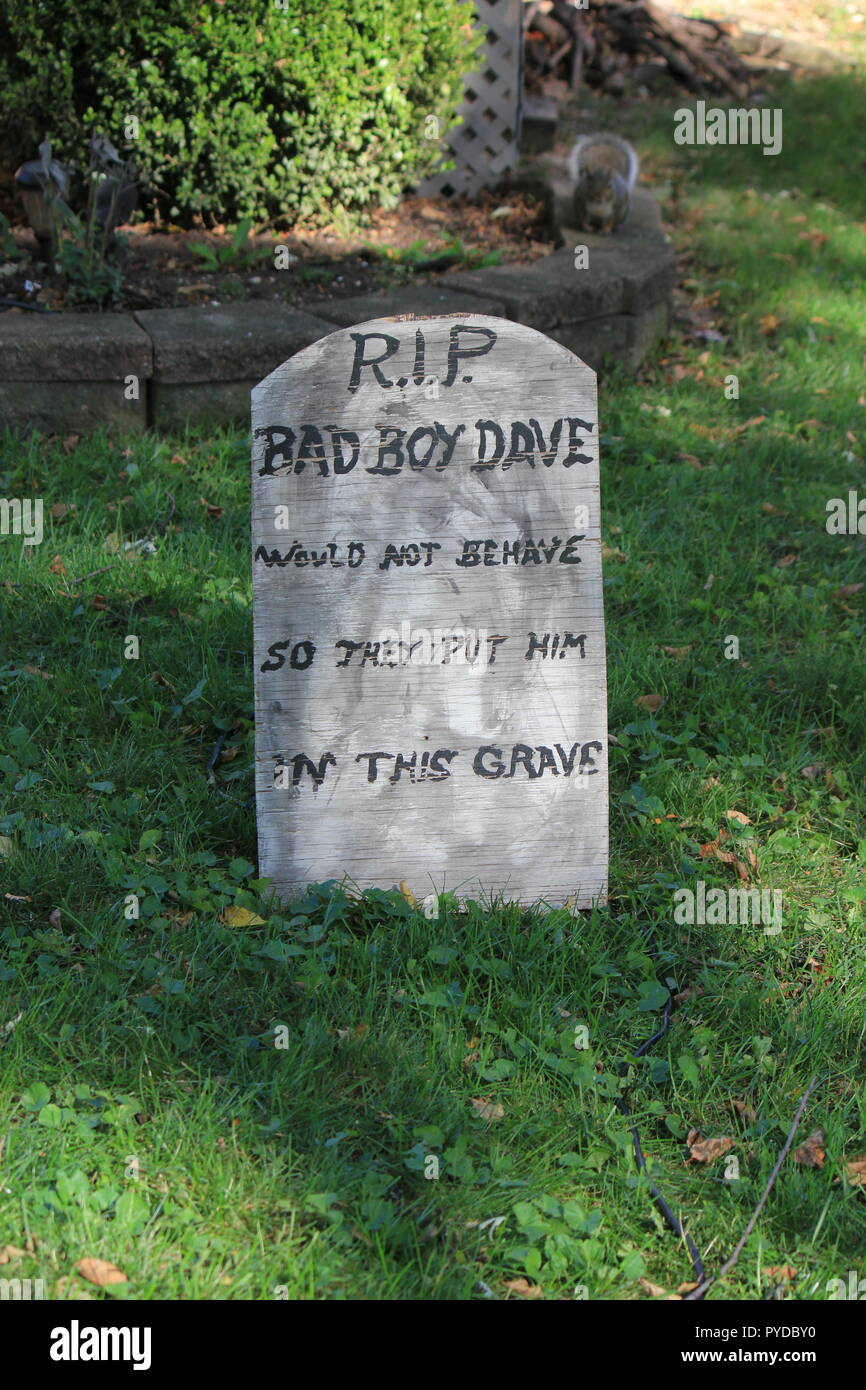 Rip Bad Boy Dave He Did Not Behave So They Put Him In This