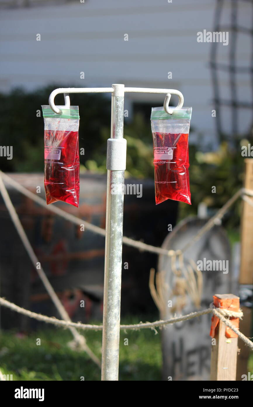 Bags of medical fluid bags full of blood hanging from a holder as creative Halloween lawn decorations. - Stock Image