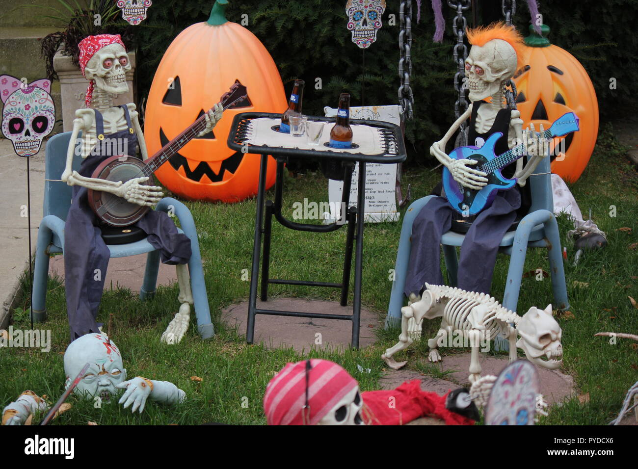 Two musician skeletons, one playing the banjo and the other playing a guitar, sitting on the front lawn, jamming out a tune as creative Halloween lawn decorations. - Stock Image