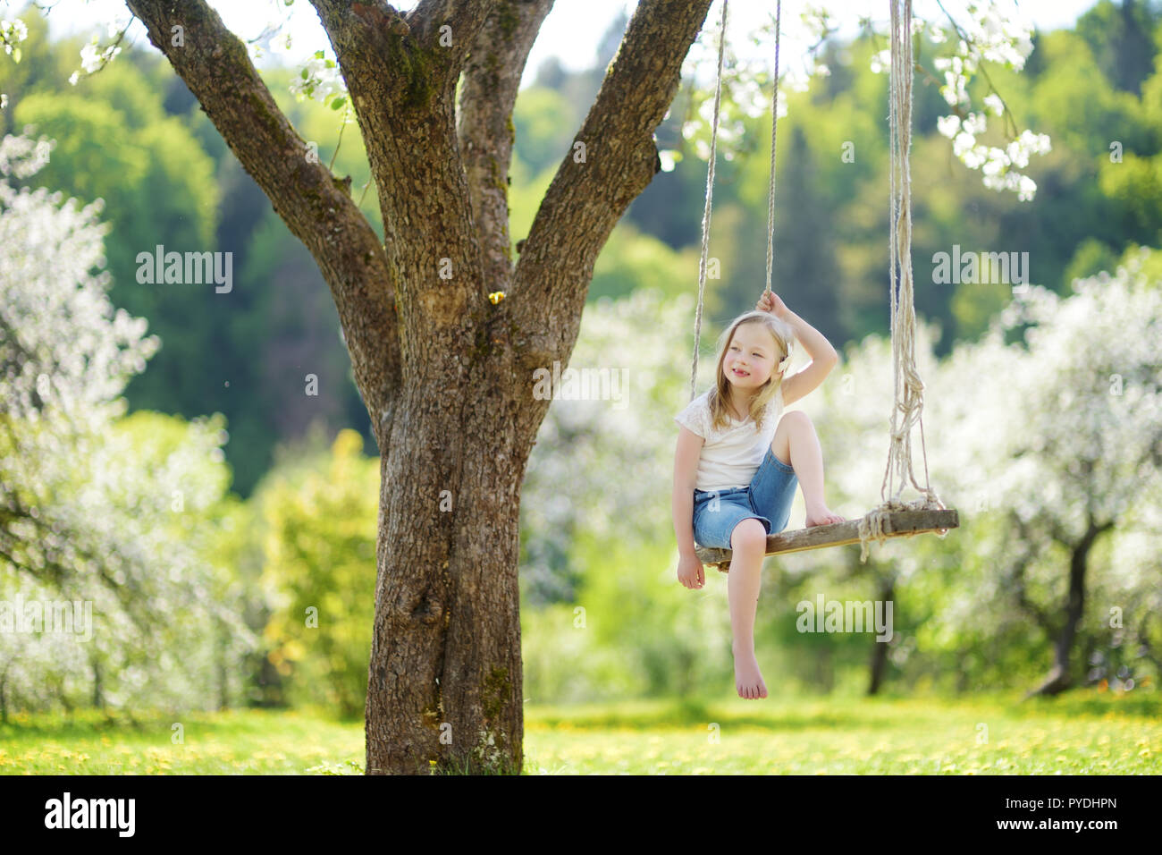 Cute Little Girl Having Fun On A Swing In Blossoming Old Apple