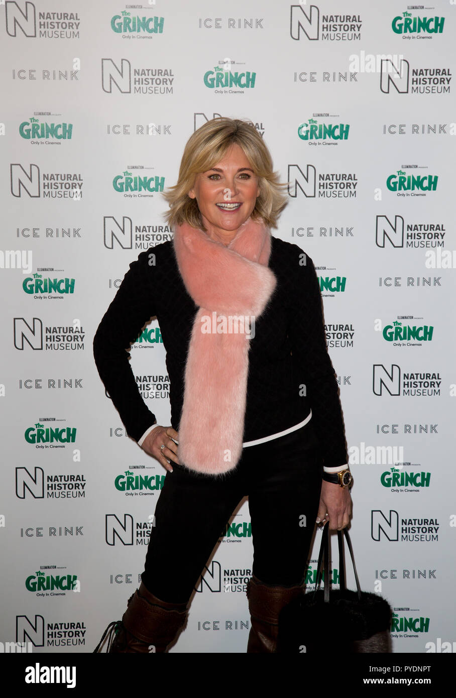 London Uk 24th October 2018 The Natural History Museum Kensington Anthea Turner attends the natural history museum ice rink launch evening - Stock Image