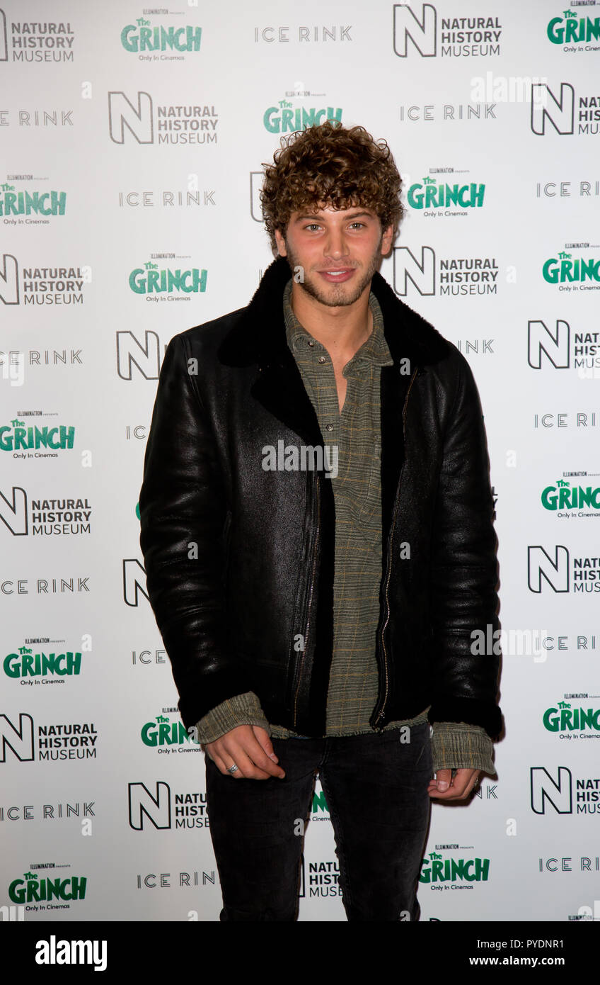 London Uk 24th October 2018 The Natural History Museum Kensington Eyal Booker attends the natural history museum ice rink launch evening - Stock Image