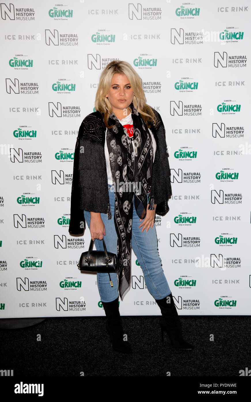 London Uk 24th October 2018 The Natural History Museum Kensington Nadia Essex attends the natural history museum ice rink launch evening - Stock Image