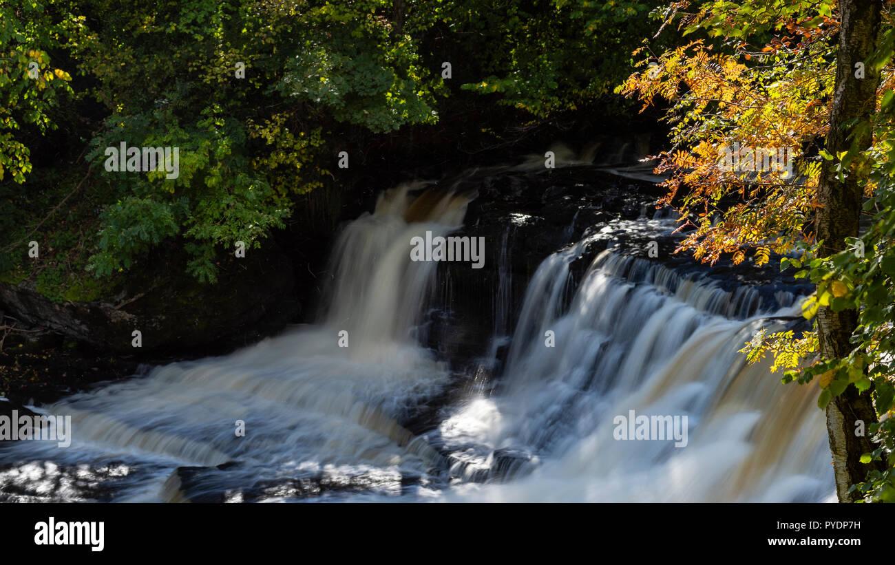 Autumnal light on Middle Force, Aysgarth, Wensleydale, Yorkshire, UK - Stock Image