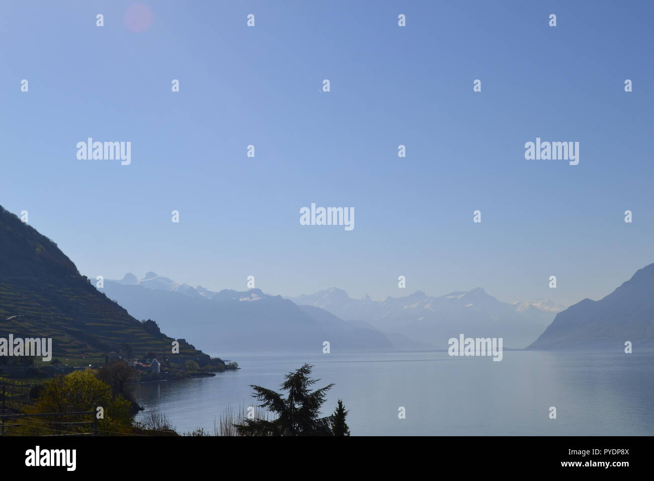 View from near Epesses village, Vaud, looking east down Lake Geneva to Montreux and the Pennine Alps. - Stock Image