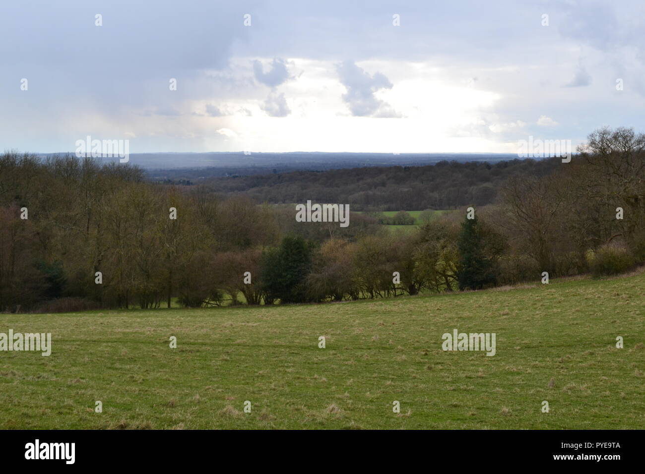 Sleet storm over the low weald of Kent near Ide Hill, North Downs. In early spring - Stock Image