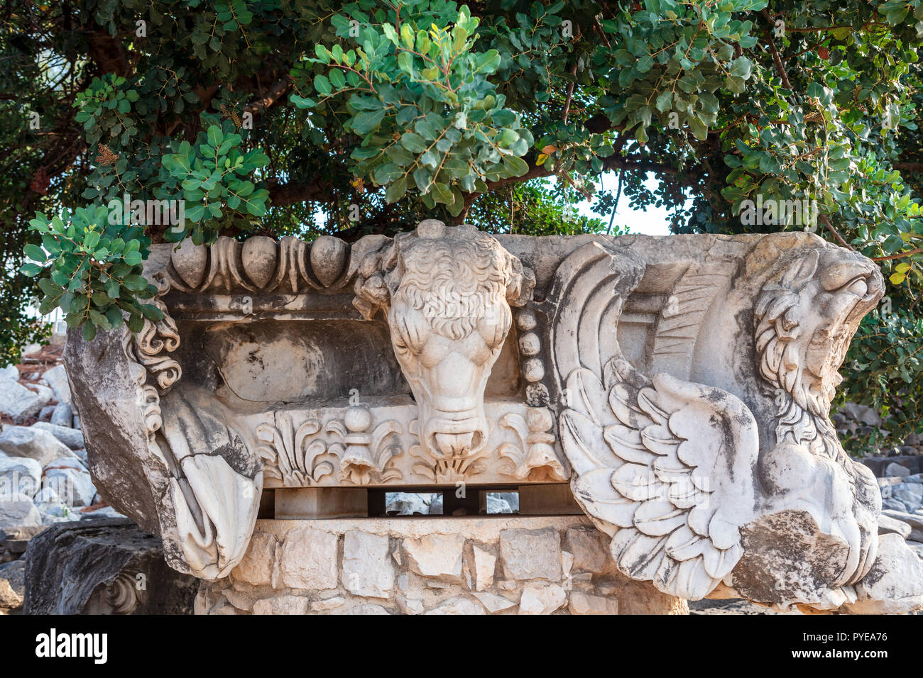 Architectural detail with head of a bull at Didyma Apollo Temple, Turkey. - Stock Image