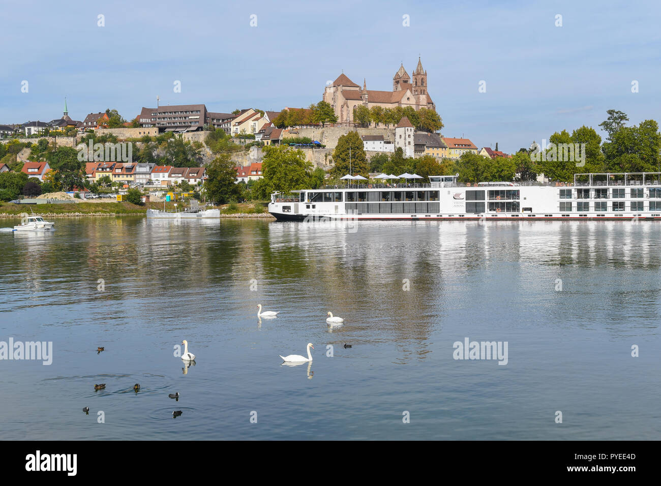 viking river cruise boat moored at Breisach am Rhein, Baden Wurttemberg, Germany - Stock Image