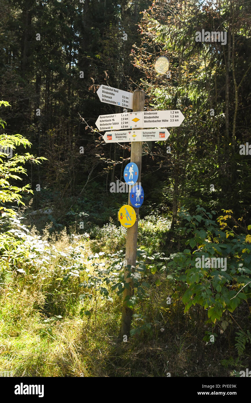 signpost marker in the eastern Black forest showing different walking trails, Germany, Europe - Stock Image