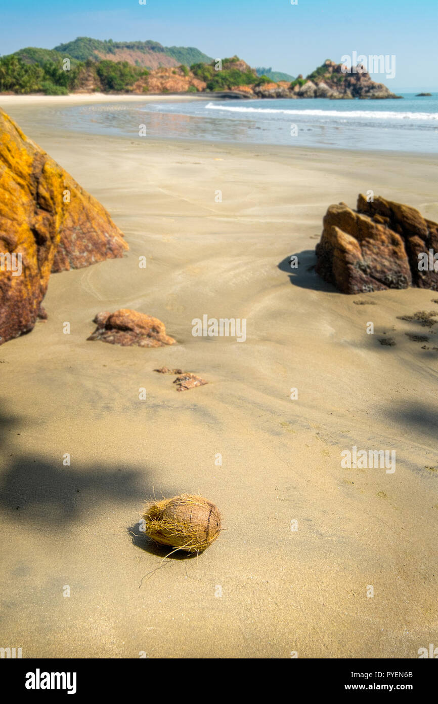 Deserted beach in Maharashtra state, India, with coconut in the foreground - Stock Image