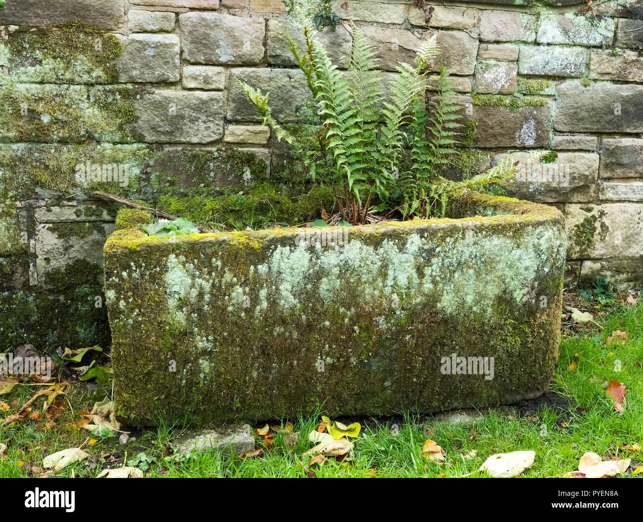 Old English stone horse trough - Stock Image