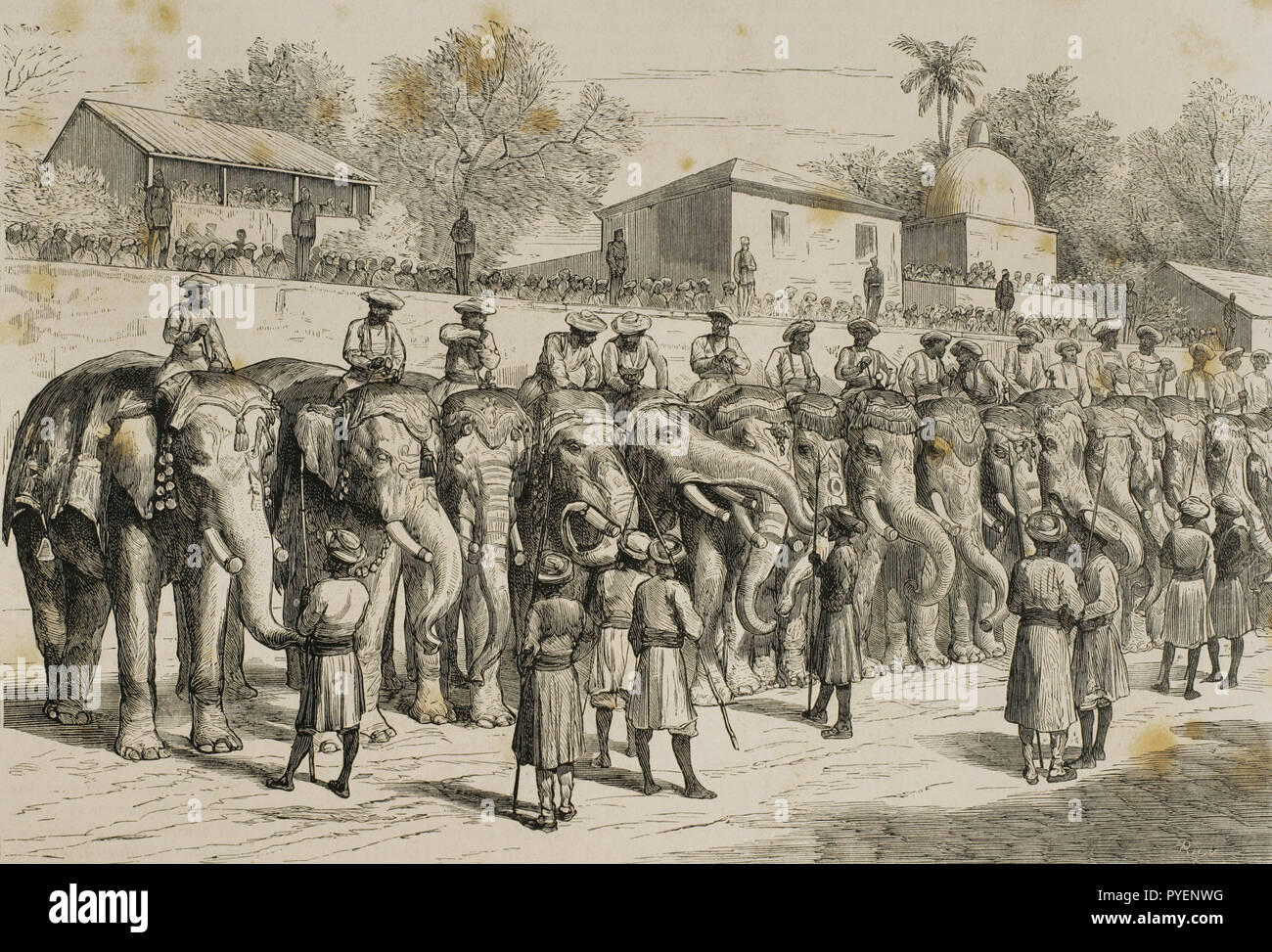 British colonialism. Journey of the Prince of Wales (1841-1910) to India. Later he would become the King Edward VII of the United Kingdom. Review to the elephants of Guicowar in honour to the Prince. City of Baroda or Vadodara. Engraving by Rico. La Ilustracion Española y Americana, January 22 of 1876. - Stock Image