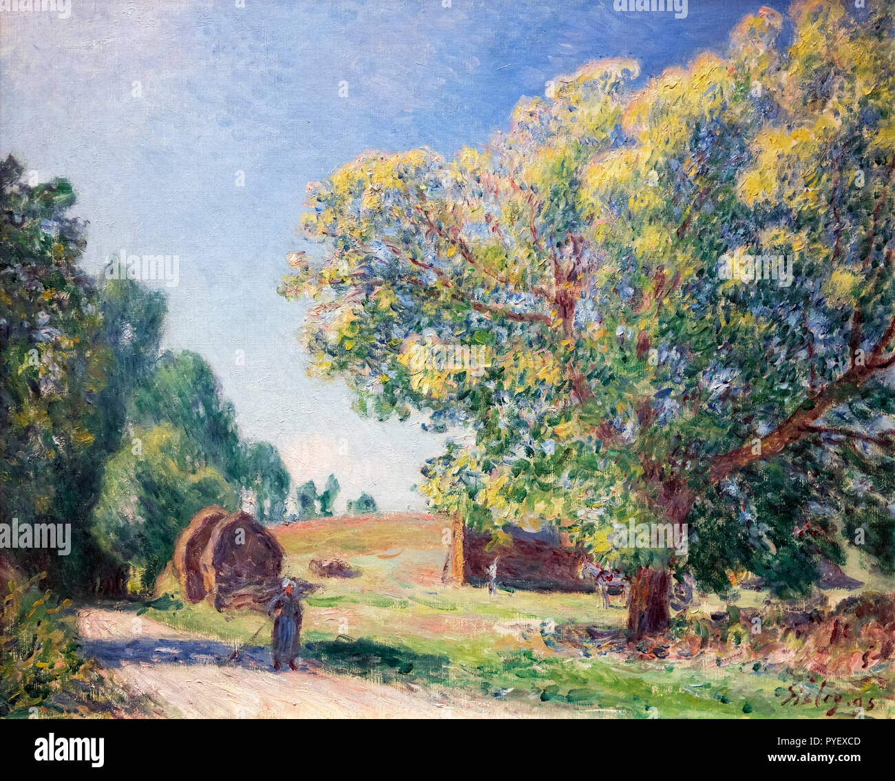 A Forest Clearing by Alfred Sisley (1839-1899), oil on canvas, 1895 - Stock Image