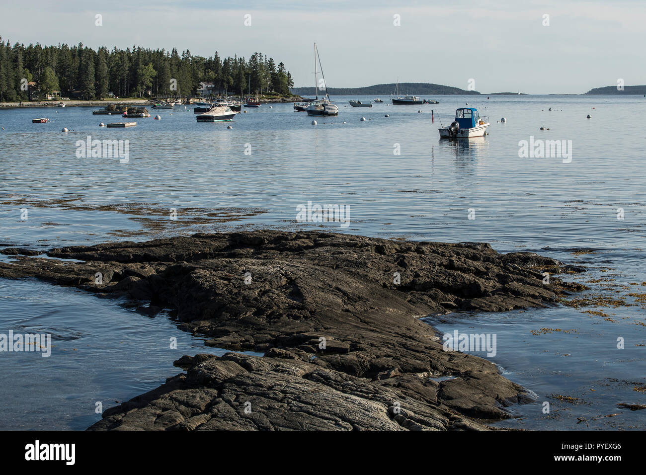 View of Tenant's Harbor, from downtown Tenant's Harbor, Maine. Ideal vacation spot for tourists. Beautiful rocky Maine coastline with fishing boats. - Stock Image