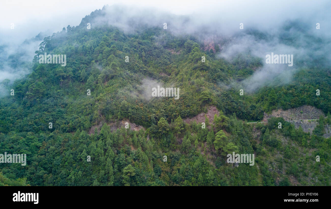 Drone shot aerial amazing clouds and fog landscape in green mountain forest landscape in La Palma island of Spain - Stock Image