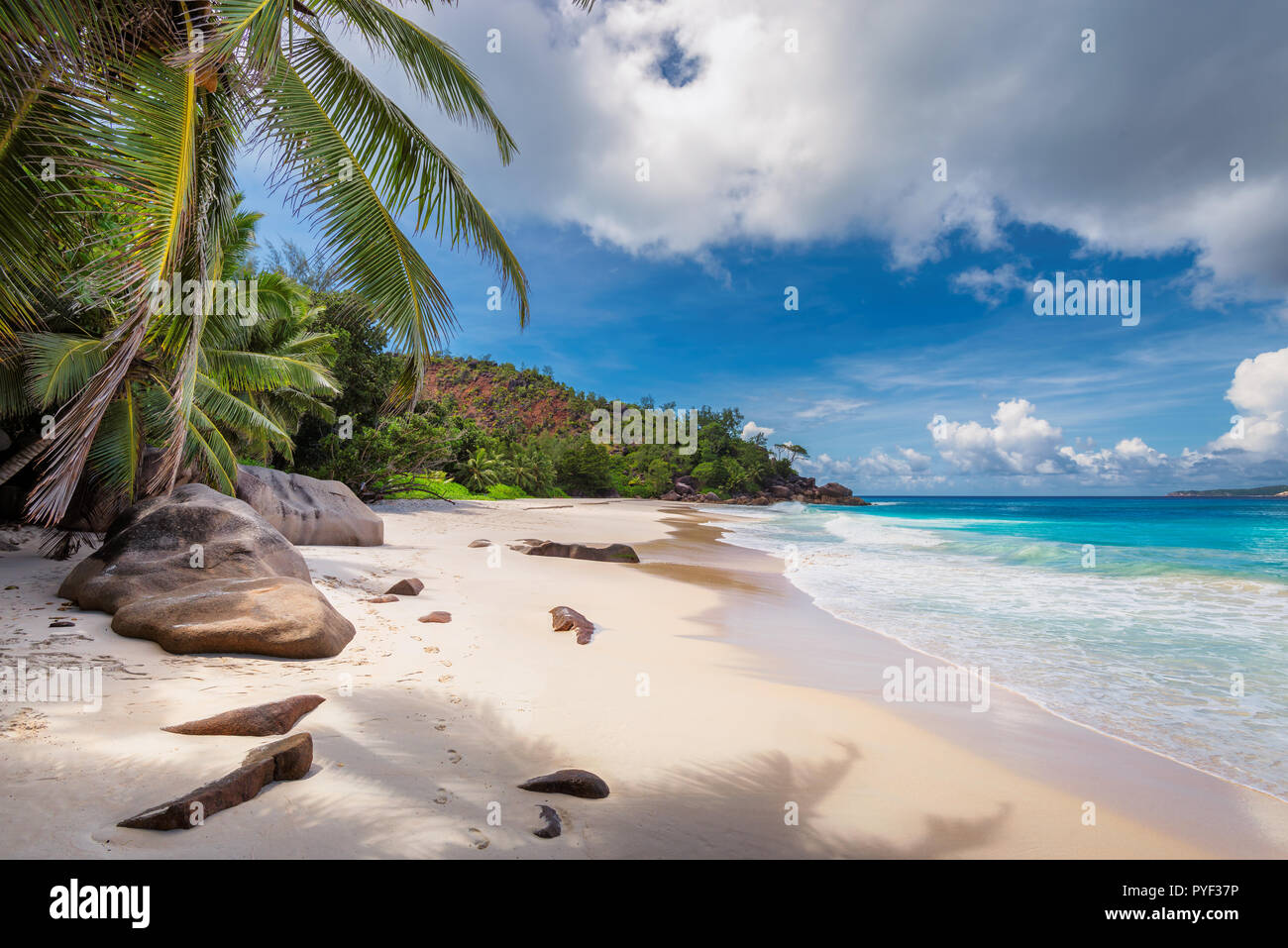Seychelles beach - Stock Image
