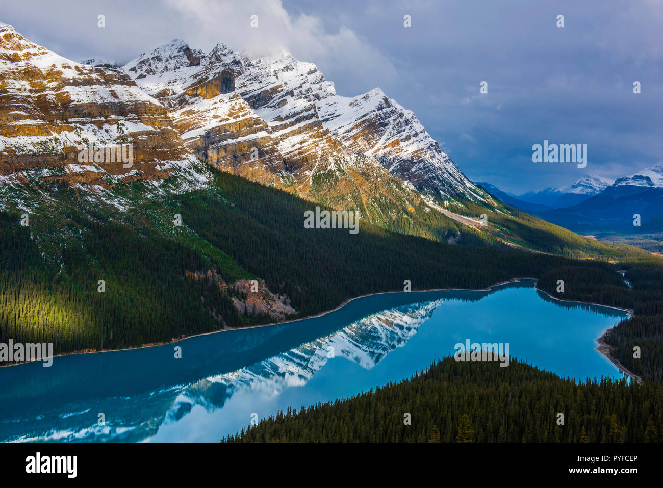 Peyto Lake, Banff NP, Alberta, Canada, by Bruce Montagne/Dembinsky Photo Assoc Stock Photo