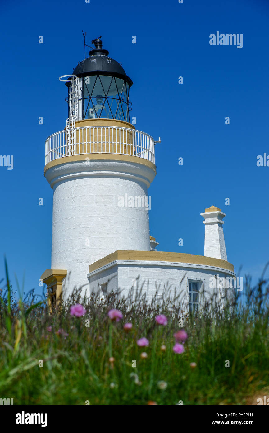 Chanonry Point near Inverness - Stock Image
