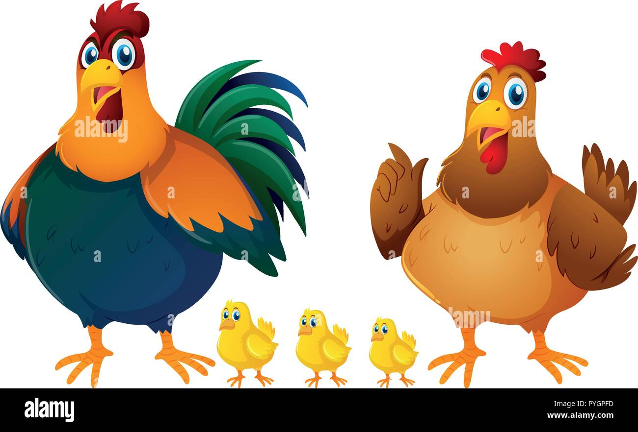 Chicken family with three chicks illustration - Stock Vector