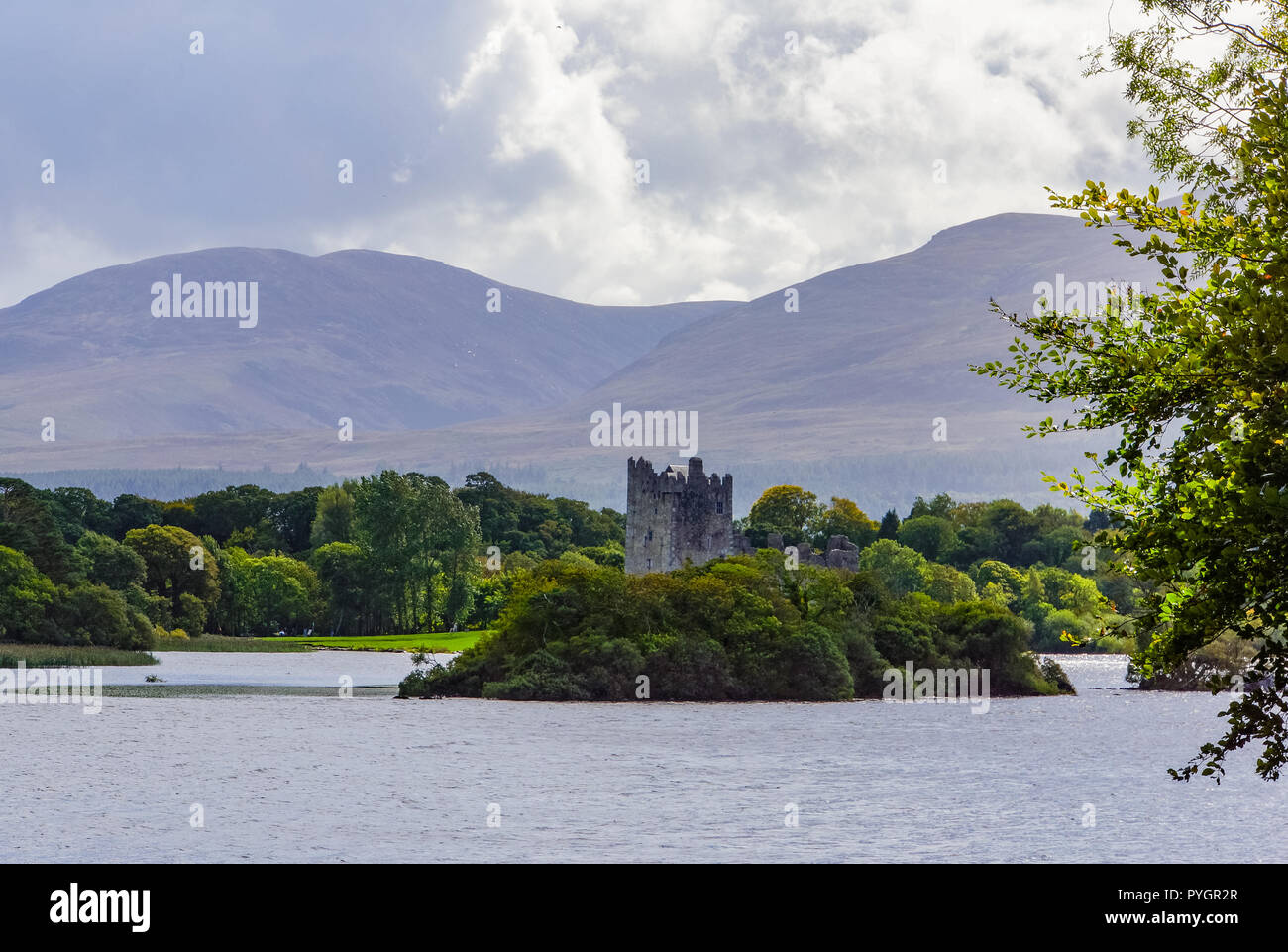 f37c161cbda45 scenic views of Ross Castle while enjoying an Irish traditional Horse and  Jaunting car ride around
