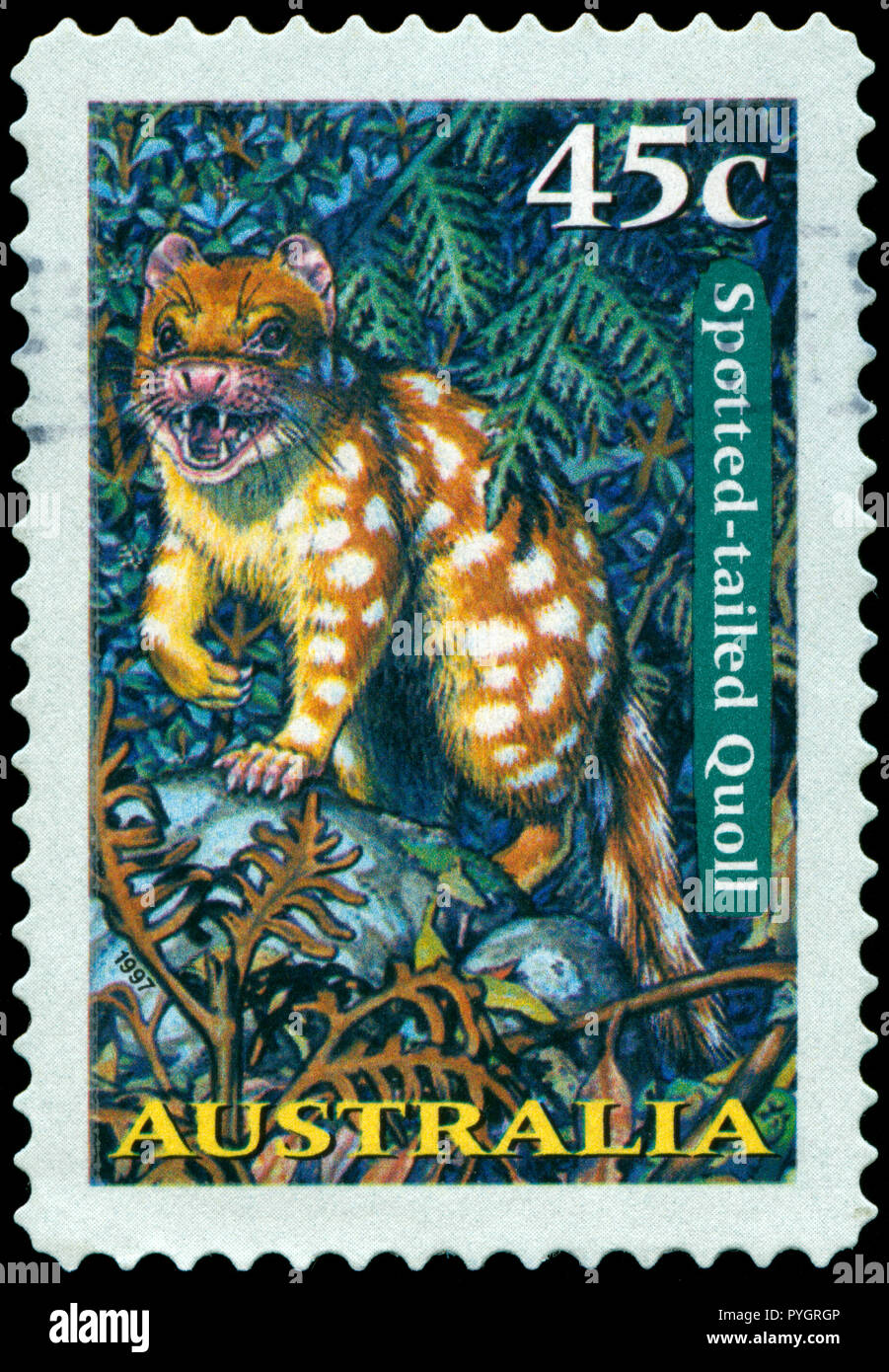 Postmarked stamp from Australia in the Nocturnal Animals series issued in 1997 - Stock Image