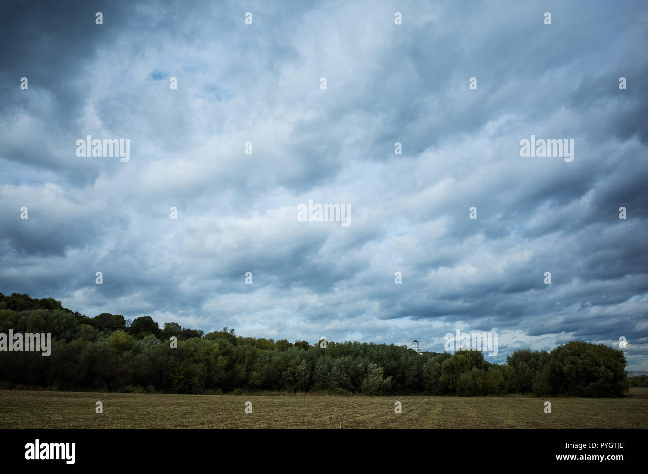 Autumnal fall landscape, park with trees, field, sky with nice m - Stock Image