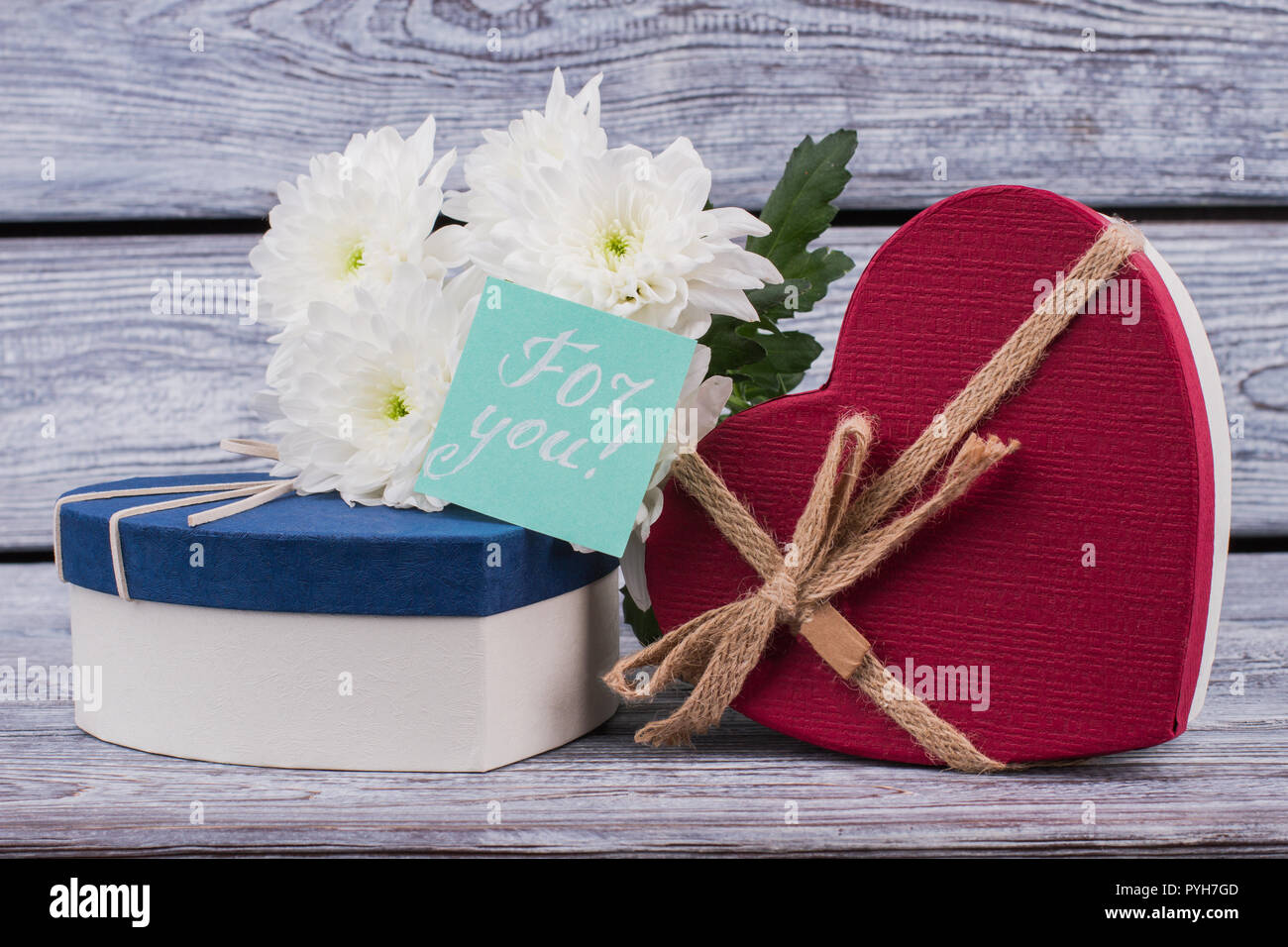Valentines Day Background With Flowers And Presents White