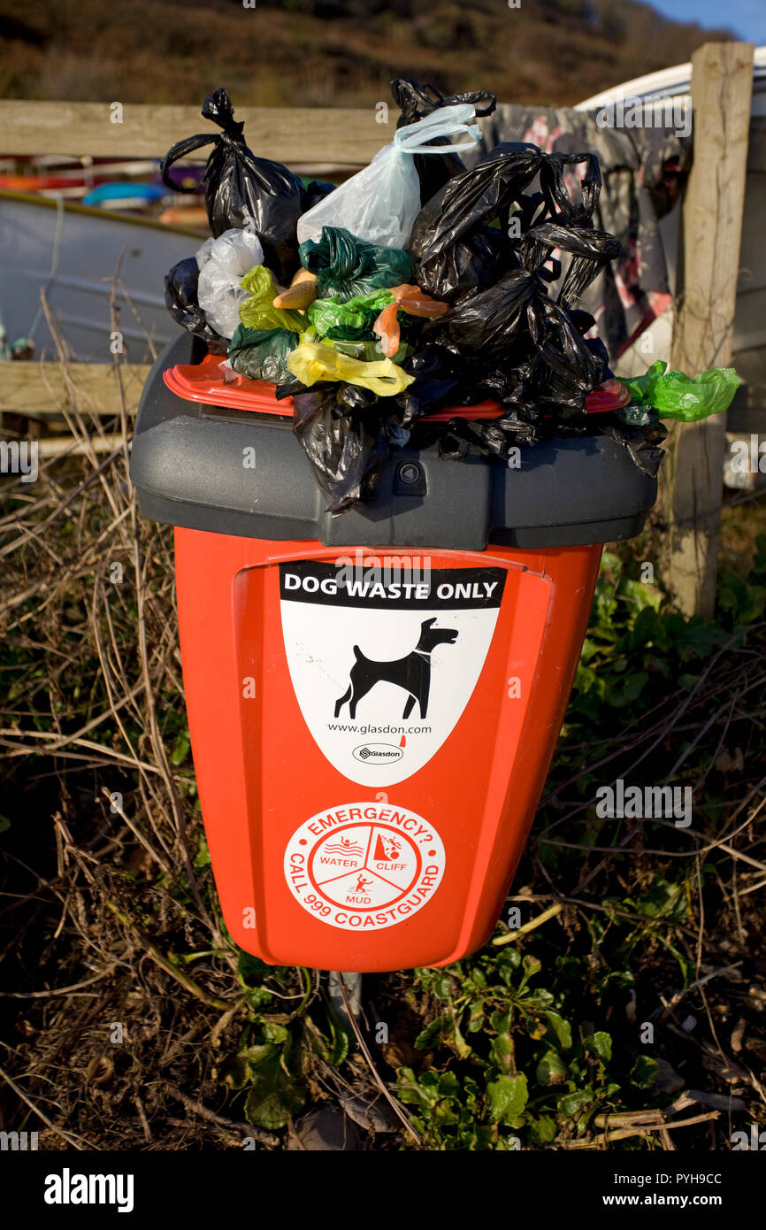 Dog waste bin overflowing with poo bags - Stock Image