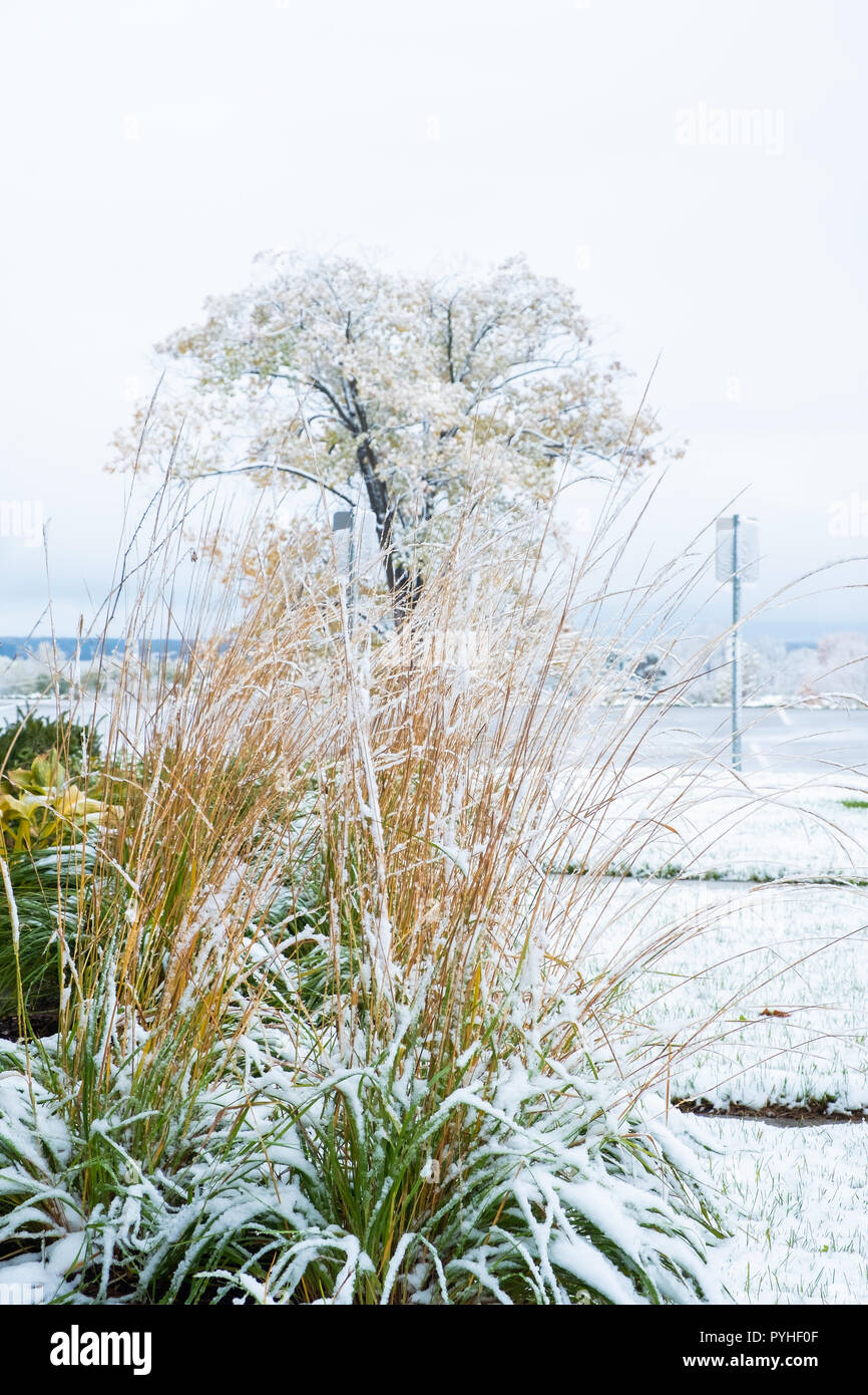 First snowfall in late October Orillia Ontario Canada creates slippery conditions. - Stock Image