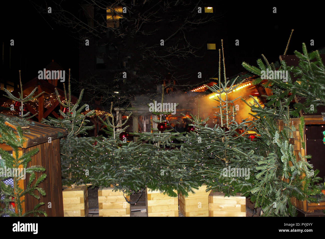 Christmas market in Germany. Sale of christmas tree on evening street Stock Photo