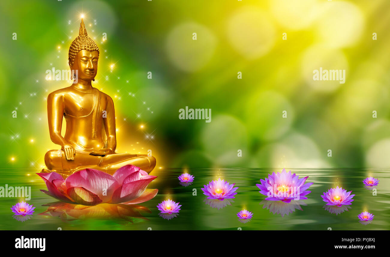 Buddha Lotus Flower Stock Photos Buddha Lotus Flower Stock Images