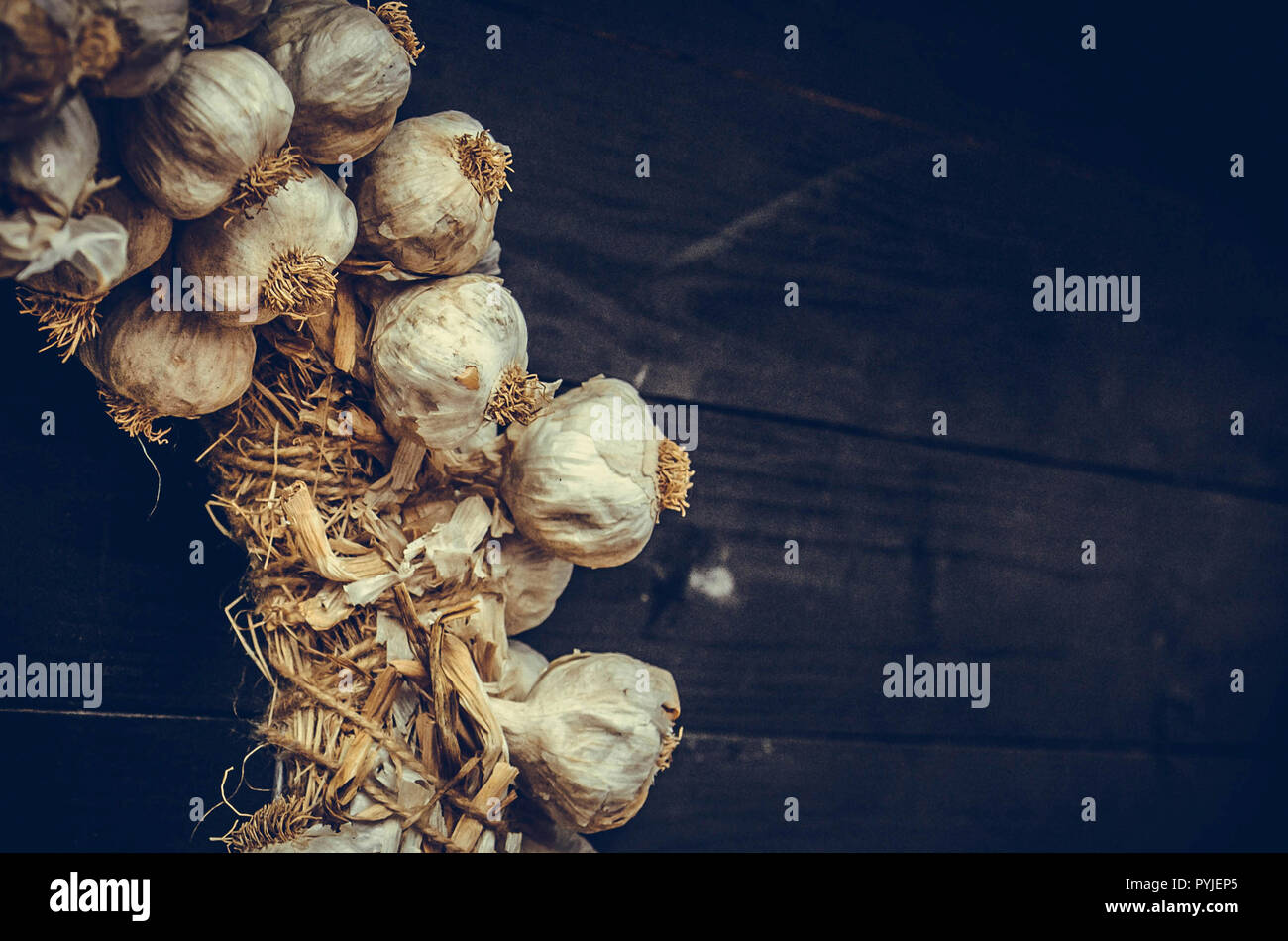 Garlic hanging on an old wooden fence. Harvest of garlic. Copy spaces. - Stock Image