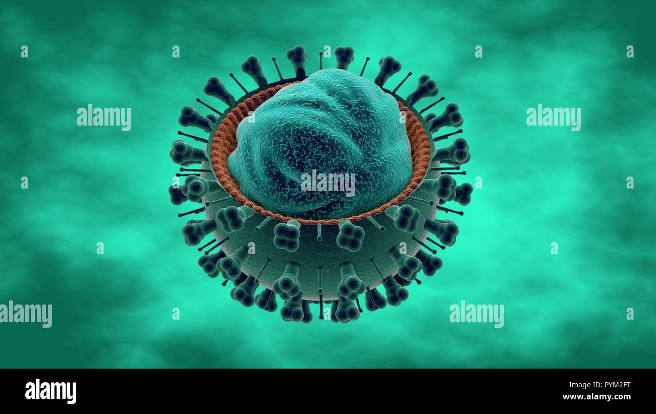 Influenza virus, the flu is an infectious disease caused by an influenza virus. Common symptoms include: high fever, runny nose, sore throat - Stock Image