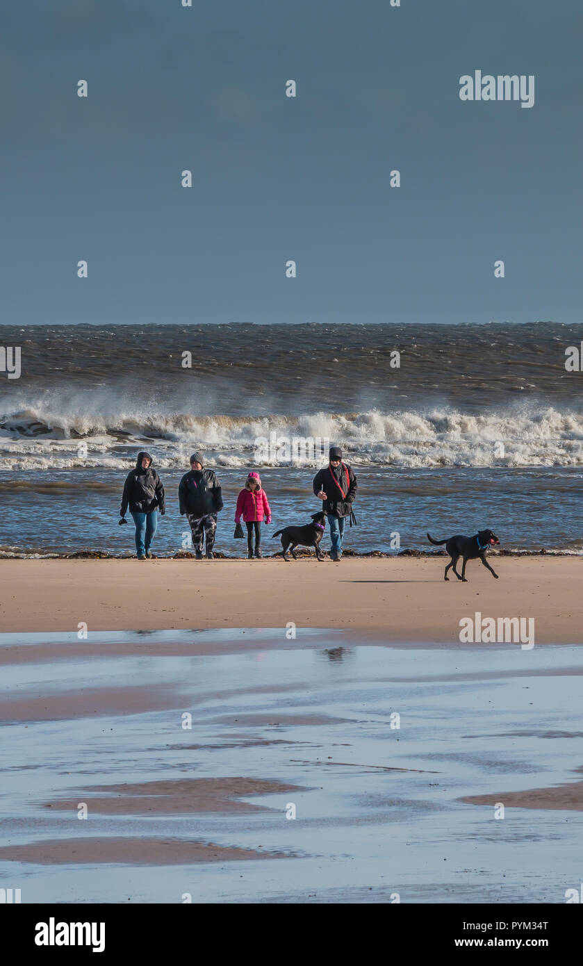 A family and their two black labrador dogs on the beach at Alnmouth, Northumberland on a cold windy winter day in bright sunshine and a rough sea Stock Photo