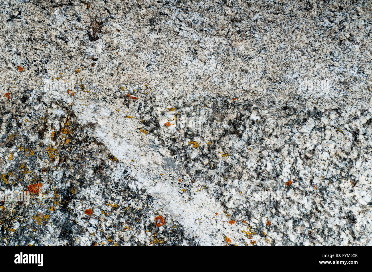 Almo Pluton granite (top half - formed about 28 million years ago) in contact with Green Creek Complex granite (bottom half - about 2.8 billion years  - Stock Image