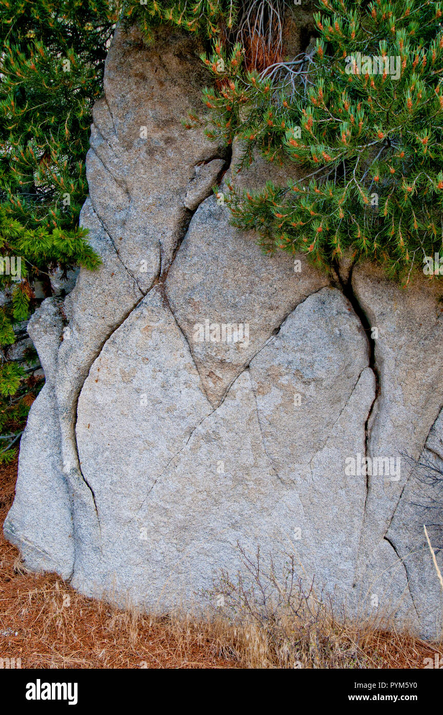 Joints (cracks) formed by thermal expansion/contraction in granite; Almo Pluton, City of Rocks National Reserve, Idaho. - Stock Image