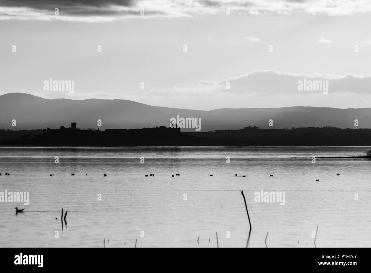Beautiful view of Trasimeno lake at sunset with birds on water, trees and Castiglione del Lago town in the background Stock Photo